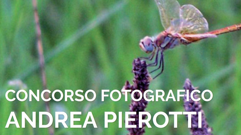 concorso-fotografico-andrea-pierotti-2020
