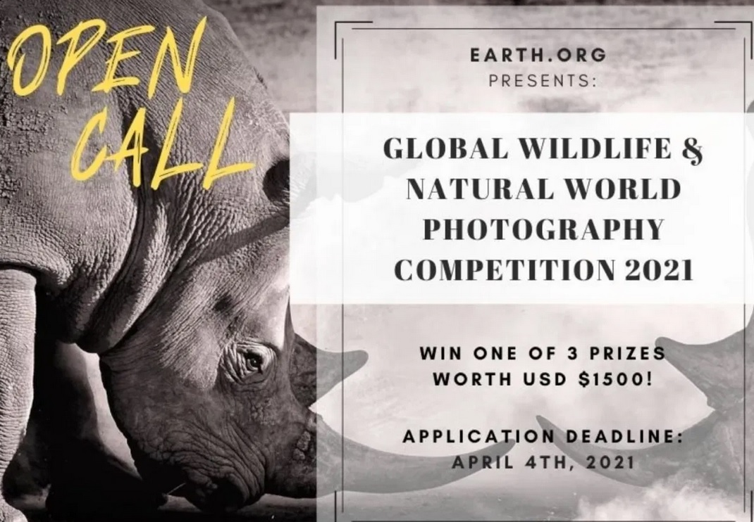 Earth.Org GLOBAL WILDLIFE COMPETITION